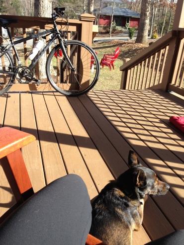 Porch Life Continues